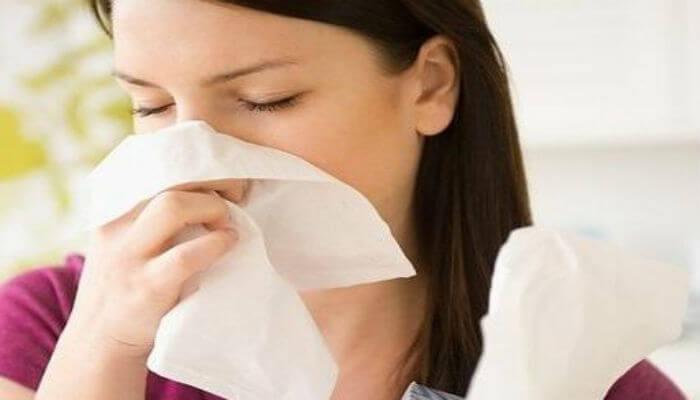 Nấm Vân Chi giúp giảm cảm cúm hiệu quả